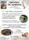 GOTOWY Projekt Obrowiec - plakat św.jpeg